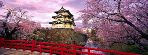 best-places-to-see-cherry-blossoms